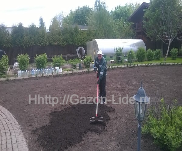 Уход за газоном после посева Уход за газоном после посева-что нужно знать? Для прорастания семян требуется время — в среднем от 15 до 20 дней.  Семенам нужна влага для прорастания. Если до посева не был устроен автоматический полив. Тогда подойдут переносные разбрызгиватели. Но если вы поливаете газона вручную, избегайте размыва почвы и используйте лейки с мелкими насадками.  Не спешите ходить по газону, косить его или начинать стандартный уход. Молодой траве нужно дать подрасти.  И только после того, как газон подрастет до 9-10 см (не ранее, чем через месяц после посева), необходимо сначала сделать высокую стрижку на высоту 5-6 см.  После первой стрижки вносят комплекс минеральных удобрений по инструкции от производителя (для равномерного распределения удобрений следует применять сеялку).  После стрижки и подкормок газон начинает уплотниться. Но не ждите, что газон сразу превратится в волшебный ковер: это произойдет только на 2-3 год и только при правильном сезонном уходе.