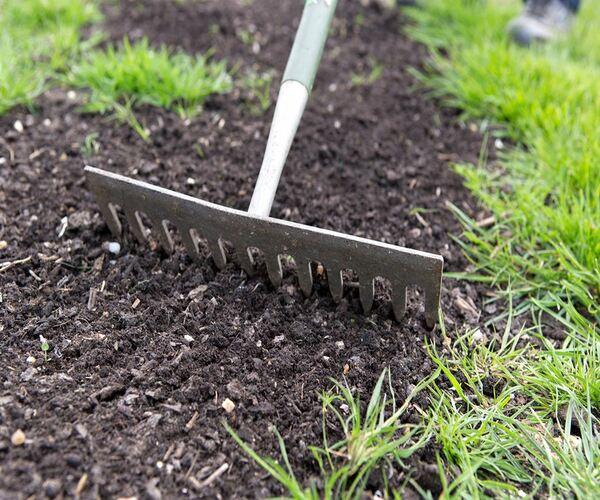 Подсев газона